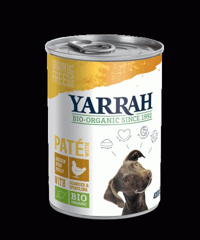 vollwertige Ernährung für Hunde