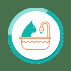 Waschen - Fellpflege