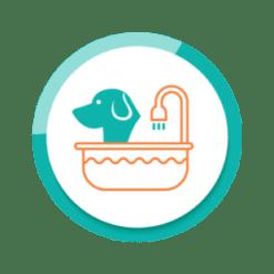 Waschen Fellpflege