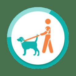 Sicherheit - Unterwegs mit dem Hund