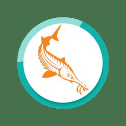 Aquaris Störfutter